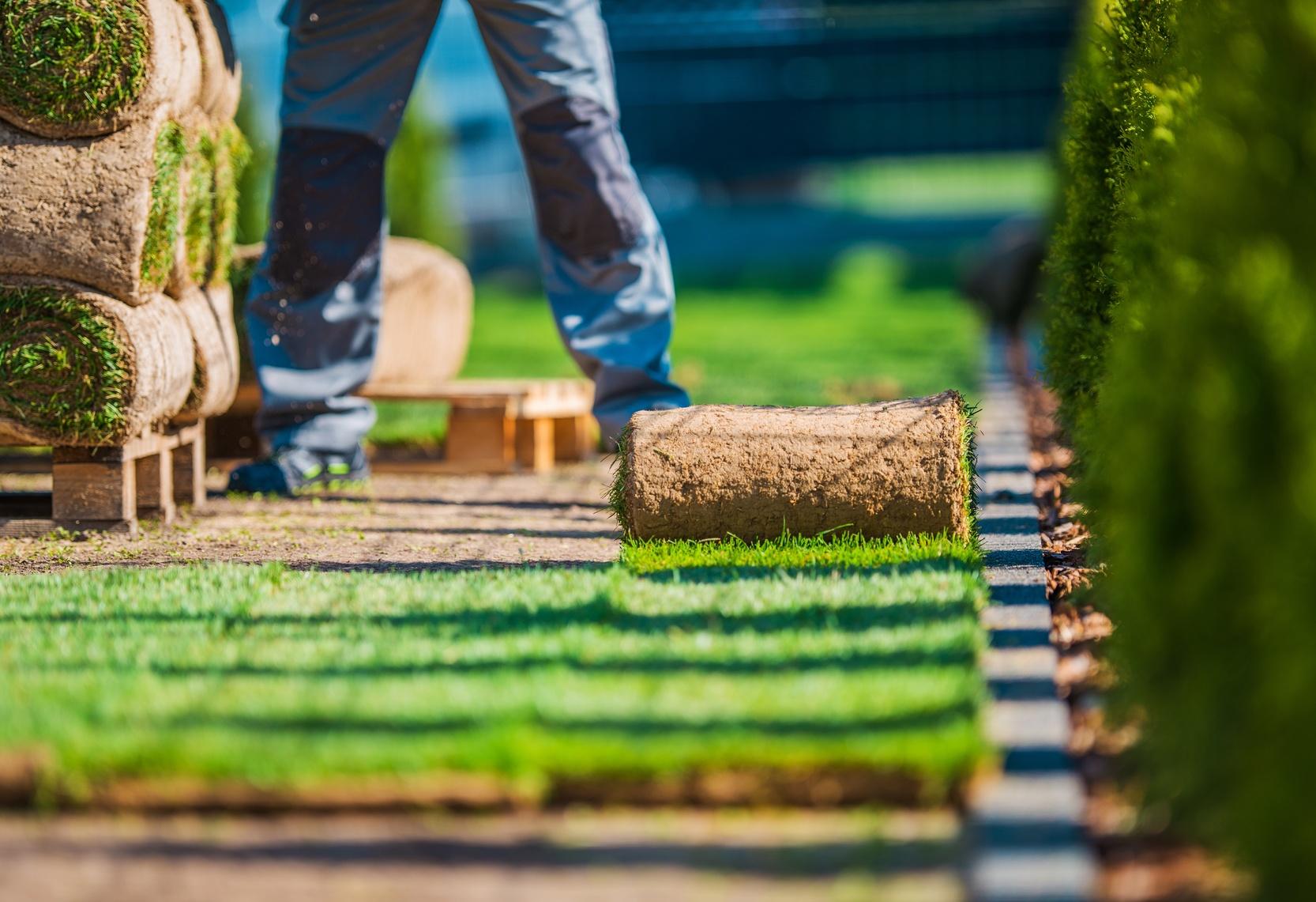 Cr ation de jardin et entretien d 39 espace vert do it green for Tarif creation gazon